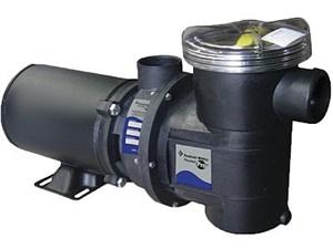 Motobomba Pentair Bomba BPF3 3/4cv (0,75) 220v monofásico ou 220v/380v trifásico