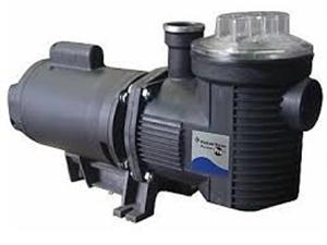 Motobomba Pentair Bomba BPF6 2,0cv 220v monofásico ou 220v/380v trifásico